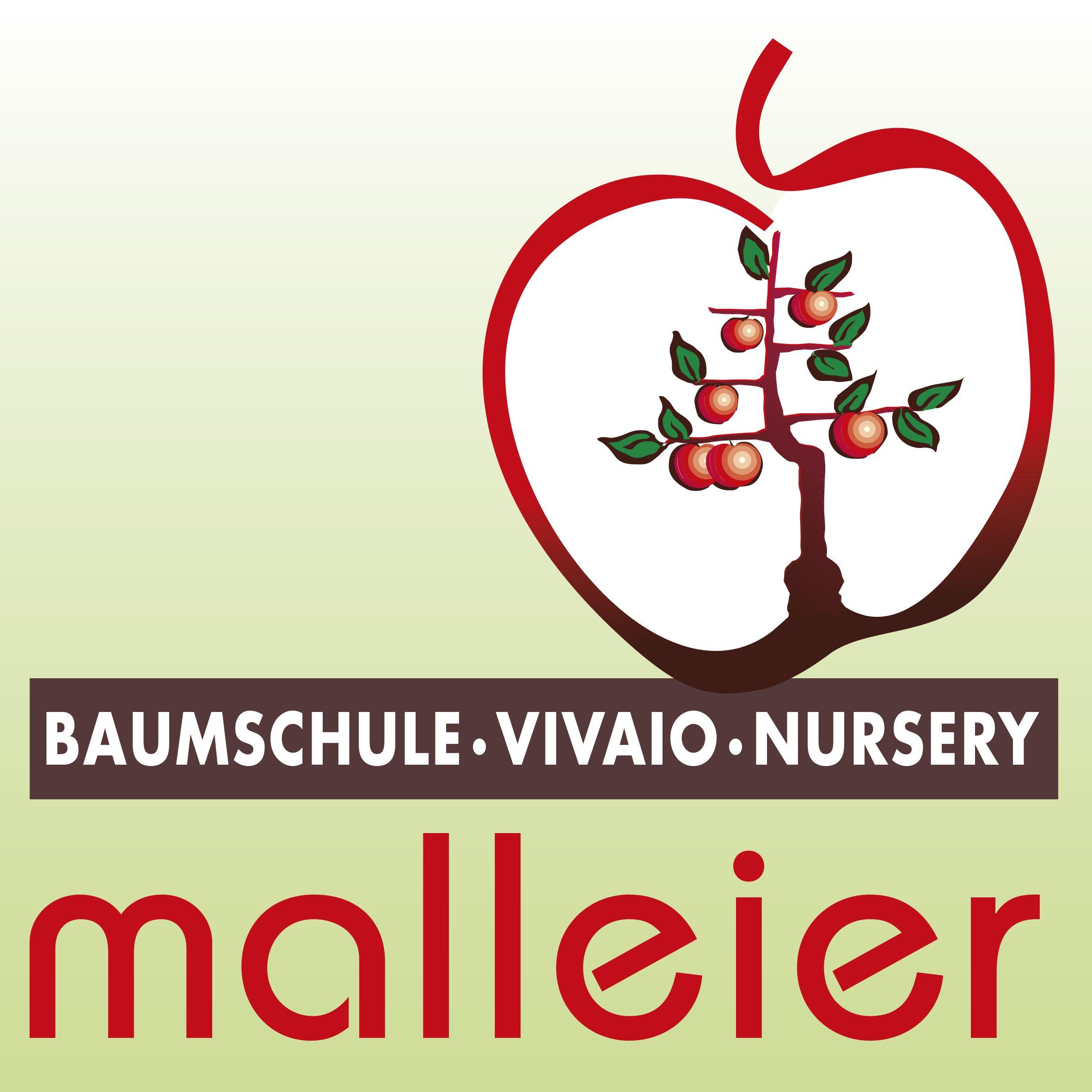 Baumschule_Malleier_Logo.jpg
