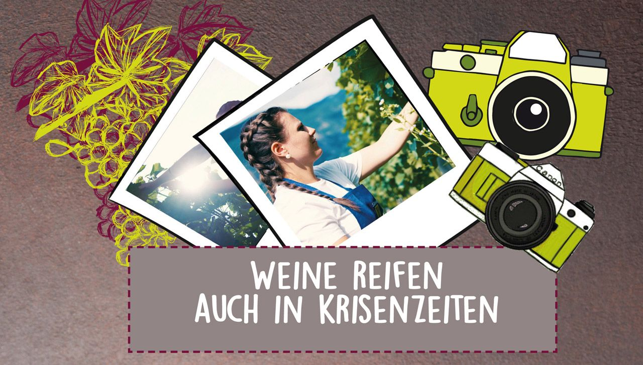 Fotowettbewerb-Wein.jpg