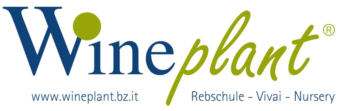 Logo_Wineplant_bz_it_rebschule_vivai_nursery_balken_mit_web.jpg